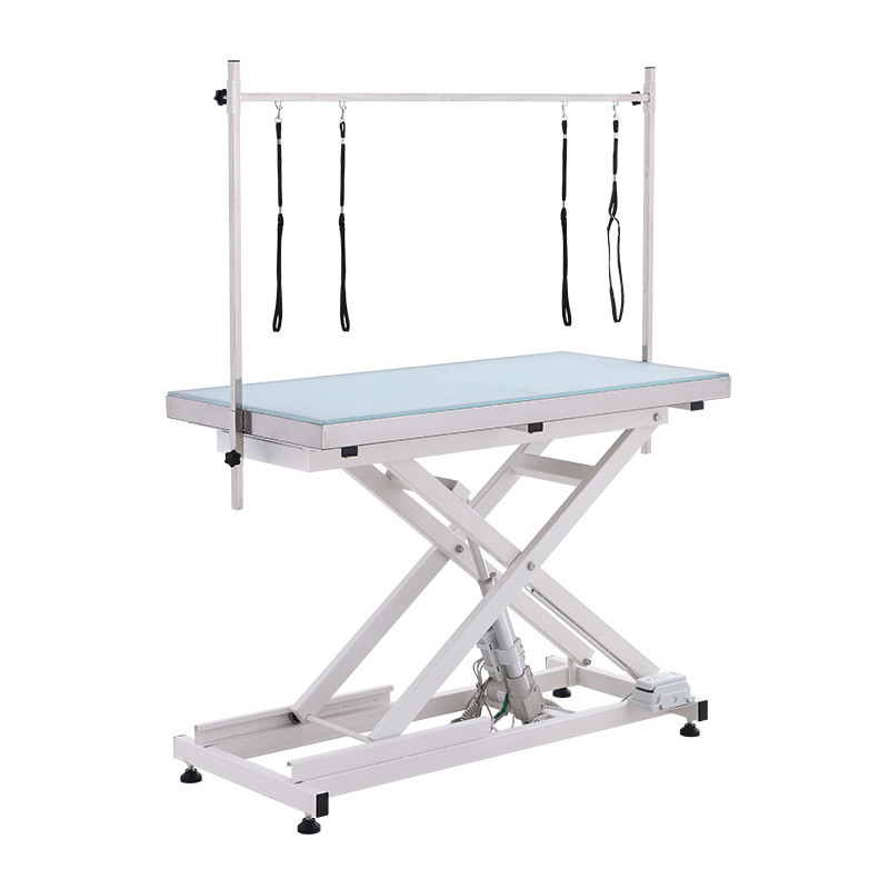 Electric Lifting Pet Dog Grooming Table with Led Lightening LD-111