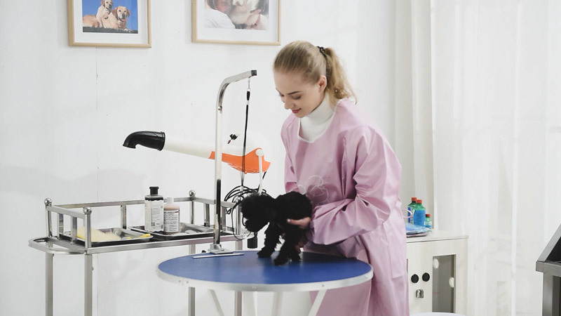 SH-702 Hydraulic grooming table USES video